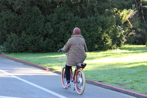 Dressed in leopard outfit on an e-bike.  How dashing!