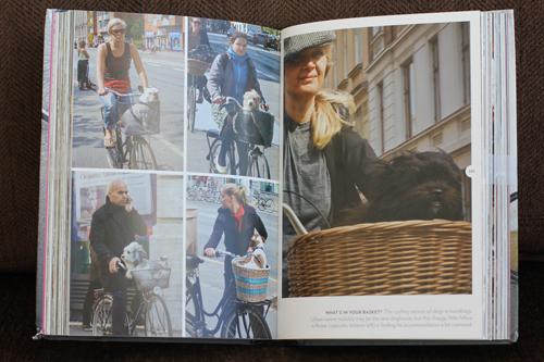 dogs on bikes