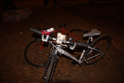 This bike has a cool dashboard. On the handle bars are: a bike bell, bike speaker, small plush dog, festive corsage that lights up blue, and front bike light.