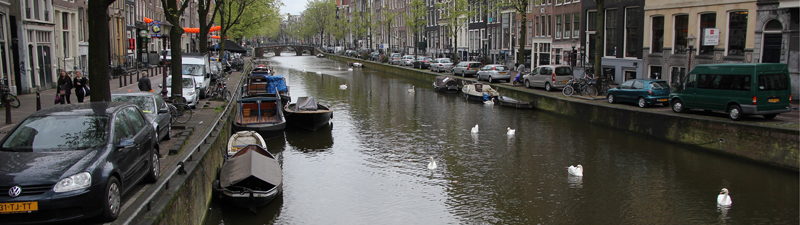 A water canal filled with swans.