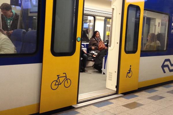 wheelchair doors