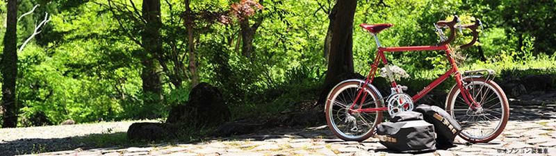 Bruno. Image courtesy of Bruno Bike 2014