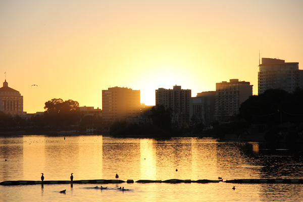 Lake Merritt is an urban park centrally located in the middle of the city.