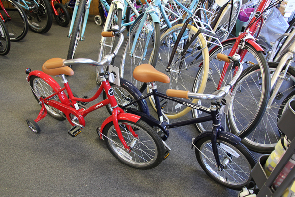 Green Cyclery bike shop in Pearl St.