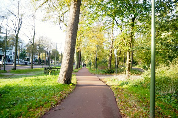 A cycle track in the Hague