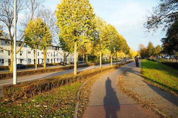 Another beautifully landscaped cycle track in Den Bosch
