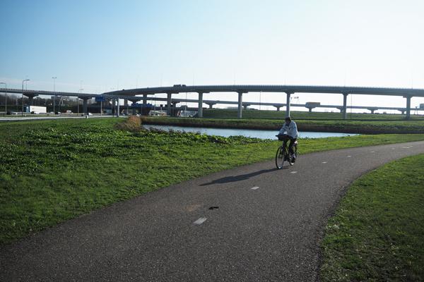 Yes, a bike in a Dutch suburb can get you anywhere like a car.