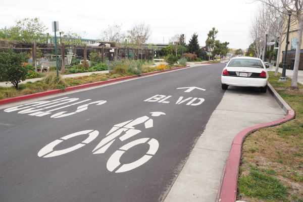 Residential streets are marked with bike blvd symbols.